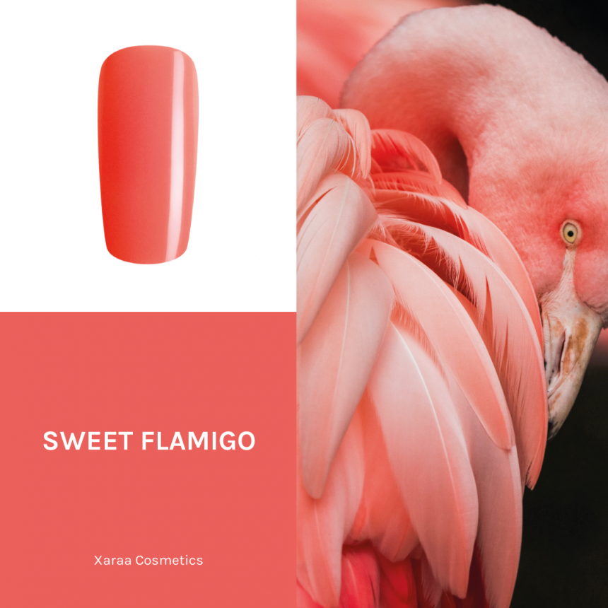 SKUX01050-Sweet-Flamingo-xaraa-cosmetics